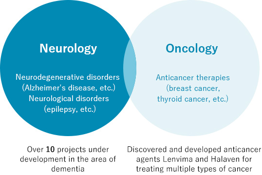 Neurology:Neurodegenerative disorders (Alzheimer's disease, etc.)Neurological disorders (epilepsy, etc.)  Over 10 projects under development in the area of dementia Oncology:Anticancer therapies (breast cancer, thyroid cancer, etc.) Discovered and developed anticancer agents Lenvima and Halaven for treating multiple types of cancer